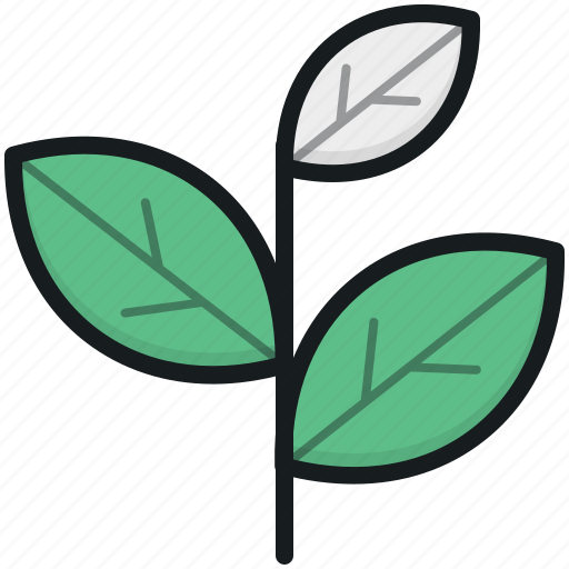 ecology, sapling, tree branch, tree leaves, twig icon
