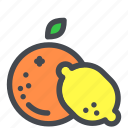 citrus, fruit, lemon, orange icon
