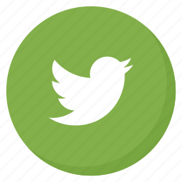 bird, circle, green, media, social, tweet, twitter icon