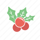 christmas, decoration, mistletoe, xmas
