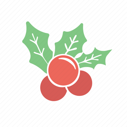 christmas decoration mistletoe xmas icon