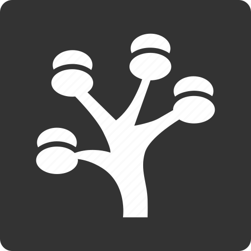 apple tree, ecology, money tree, nature, organic, plant, project icon