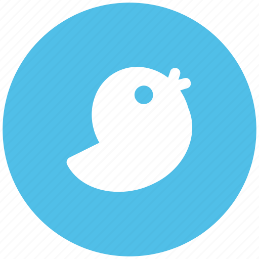 flying bird, microblog, social media, software, twitter, twitter bird, twitter logo, twitter sign icon