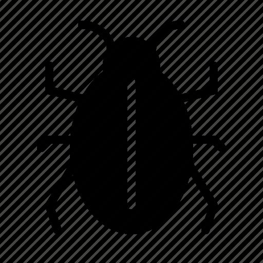bug, computer, hardware, it, programming, service, webdesign icon