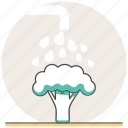 broccoli, concept, cooking, healthy, vegetables, washing icon