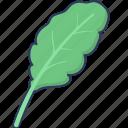 salad, cabbage, vegetable