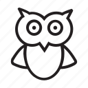 education, icon icon, line icon, owl, wisdom icon icon