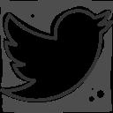 logo, social networks, twitter