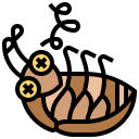 insect, animal, virus, cockroach icon