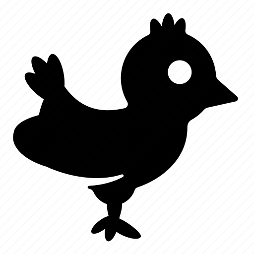 animal, chicken icon