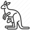 animal, australia, australian symbol, kangaroo