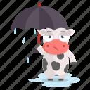 animal, cow, emoji, emoticon, rain, sticker, umbrella icon