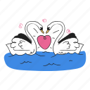 swan, bird, animal, wildlife, nature, heart, love, romance, romantic