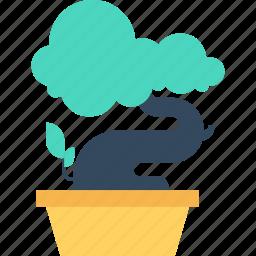bonsai, decoration, flower, growth, nature, plant, tree icon