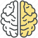 brain, brainstorming, cerebrum, cerebrum lobes, human, idea, mind, think icon
