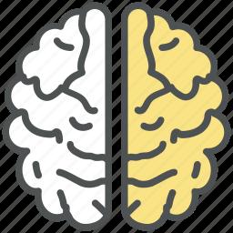 brain, brainstorming, cerebrum, cerebrum lobes, human, idea, mind, think icon