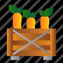 box, carrot, farm, garden