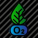 ecology, leaf, oxygen, pollution
