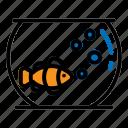 aquarium, fish, goldfish, nemo, pets