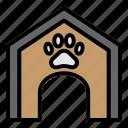animal, cat, house, paw, pet