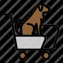 animal, dog, pet, shop, trolly