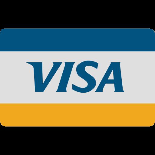 card, cash, checkout, credit, visa icon
