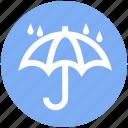 forecast, protection, rain, umbrella, weather, wet