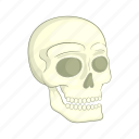 bone, cartoon, death, halloween, head, human, skull icon