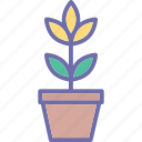 ecology, gardening, nature, plant growth icon