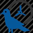 bird, bound, discipline, early, time icon