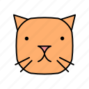 animals, cat, characters, color, cute, kitten, pets