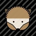 animals, characters, color, cute, hedgehog, pets, porcupine