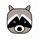 animals, characters, color, cute, forest, pets, racoon