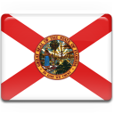 flag, florida icon