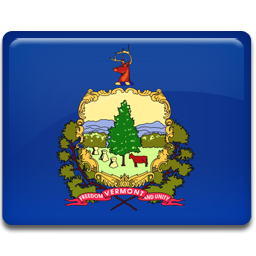 flag, vermont icon