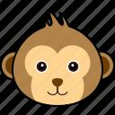animal, chimp, chimpanzee, cute, face, head, monkey