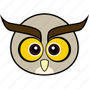 animal, bird, cute, face, head, owl, wise