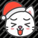 cat, christmas, hat, kitten, laugh, santa, xmas