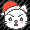 cat, christmas, curious, hat, kitten, santa, xmas