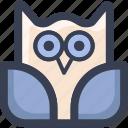 animal, colored, owl, round, zoo