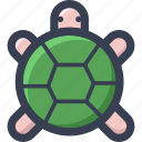 animal, colored, round, turtle, zoo