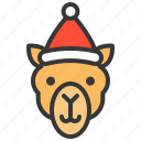 animal, avatar, camel, christmas, hat, xmas icon