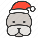 animal, avatar, christmas, hat, seal, xmas