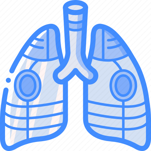 Cybernetic, cybernetics, lungs icon - Download on Iconfinder