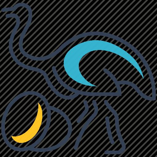 animal, egg, food, ostrich icon