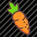 healthy, carrot, vegan, vegetable