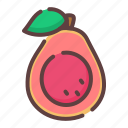 healthy, guava, food, fruit icon