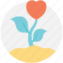 flower, giving love, growing love, love growth, natural love icon