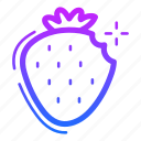 berry, casino, fruit, strawberry icon