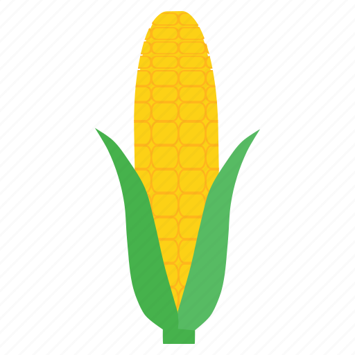 corn, food, fresh, healthy, staple, sweet, vegetable icon